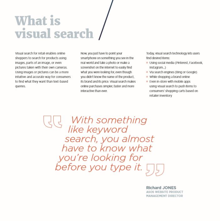 What is visual search